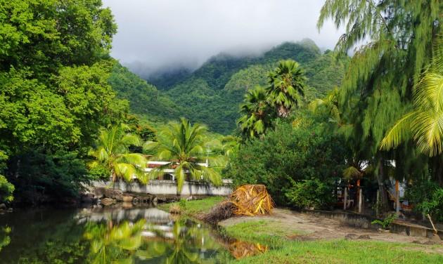 Drámai a járványhelyzet Martinique és Réunion szigetén