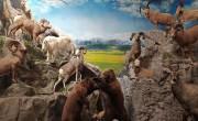 Magyarország újraindult – Új látványosságokkal bővült a keszthelyi Vadászati Múzeum