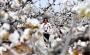 Kuponokkal élénkítik a turizmust Kína egyik tartományában