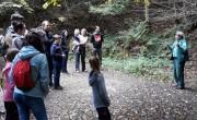 Fejlesztik a nógrádi és a Bükk-vidéki geoparkok turizmusát
