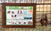 A Budakeszi Vadaspark látogatóbarát fejlesztésekkel készül a nyitásra