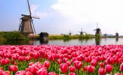 Április végéig maradnak a lezárások Hollandiában