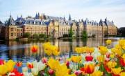 A holland kormány kisebb enyhítéseket jelentett be