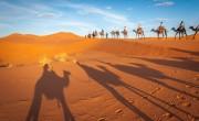 Újraindítja tunéziai járatát a Taurus Reisen