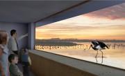 A világ első madárszínháza épül a Hortobágyon – videó
