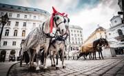 Bécsben még nagyobb megszorításokat vezethetnek be ősszel