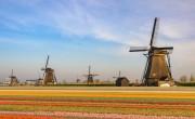 Hollandiában ismét meredeken emelkedik a fertőzöttek száma