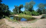 Több mint negyven éve nem építettek ekkora parkot Bécsben