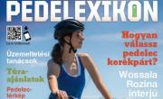 Minden, amit az e-bike-ról tudni kell  – megjelent a Pedelexikon