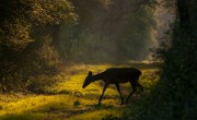 Az ország legszebb természetfotói egy kiállításon