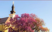 Termékfejlesztés, zöld turizmus és Covid-hatások a Turizmus Bulletinben