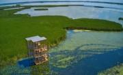 Két különleges kilátó nyílt a Tisza-tavon: csak vízen közelíthetők meg