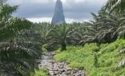 Afrika második legkisebb állama mutatkozik be a Vadászati világkiállításon