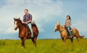 Lovasturisztikai hálózat jön létre Észak-Magyarországon