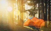 Certification system planned for domestic campgrounds