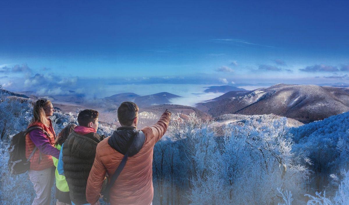 Márton-napi Libalakoma és belföldi téli kampány – indul a regisztráció