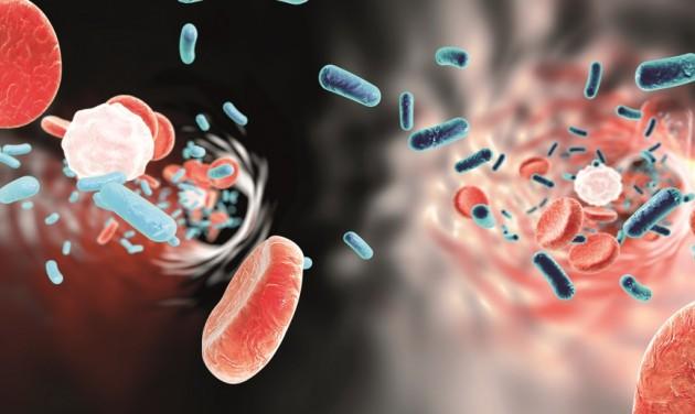 Biztonságos működés az ellenőrzések nyomán - fókuszban a Legionella