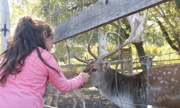 Újranyit a Tisza-tavi Ökocentrum