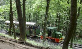 Átadták az erdei vasutat Márianosztra és Nagyirtás között