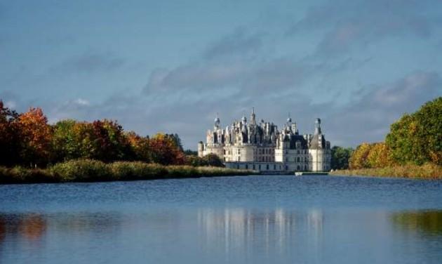 Ötszáz éves borszőlőt honosítanak újra a Loire-völgyében
