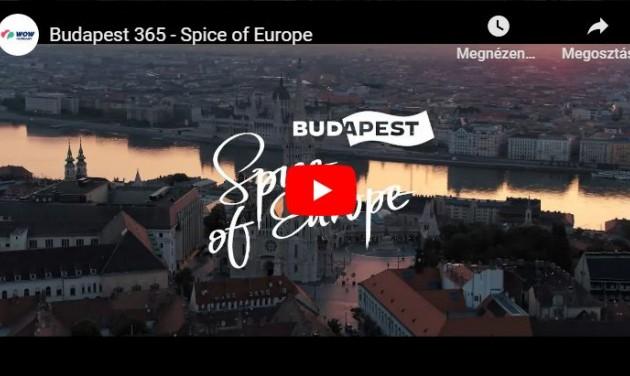 Arany Delfin-díjat kapott a Magyar Turisztikai Ügynökség kampányfilmje