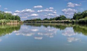 Új természetvédelmi területekről döntött a földművelésügyi miniszter