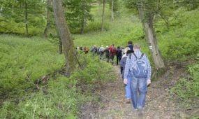 Jelölt turistaúttá vált a visegrádi Spartacus-ösvény