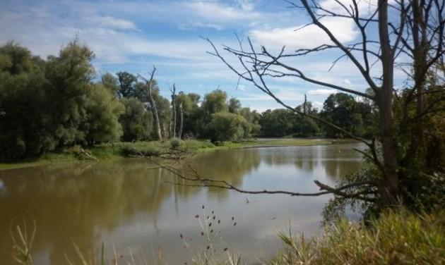 Már építik a gátat a Dráva élőhelyeinek védelmére