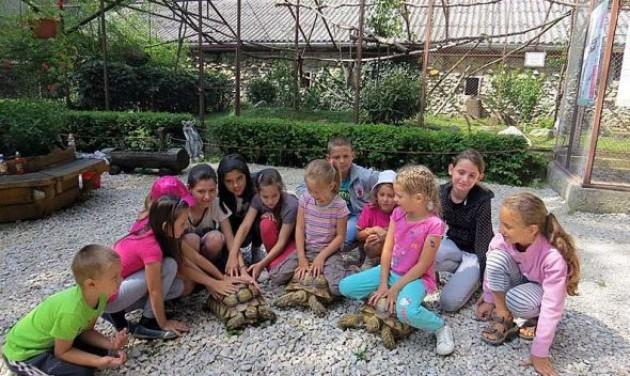 Sikeres évet zárt a Miskolci Állatkert
