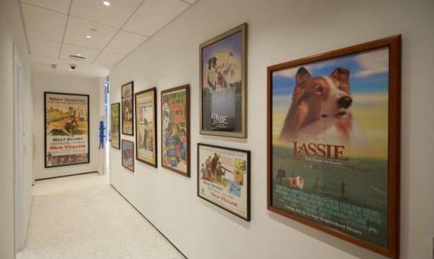 Kutyamúzeum nyílik New Yorkban