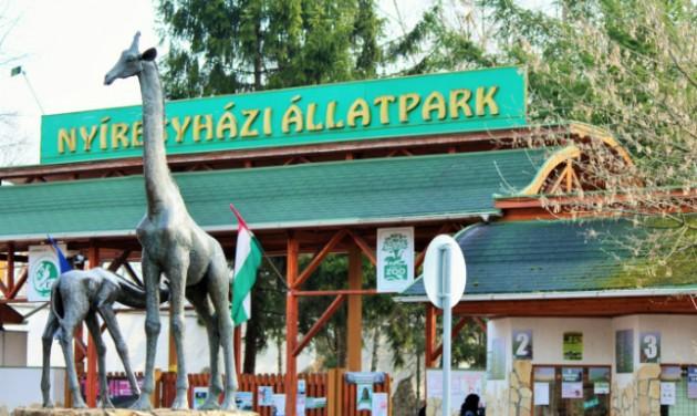 India-házat és madárröpdét is kap a Nyíregyházi Állatpark