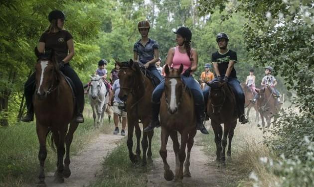Új lovas túraútvonalak a Pilisben
