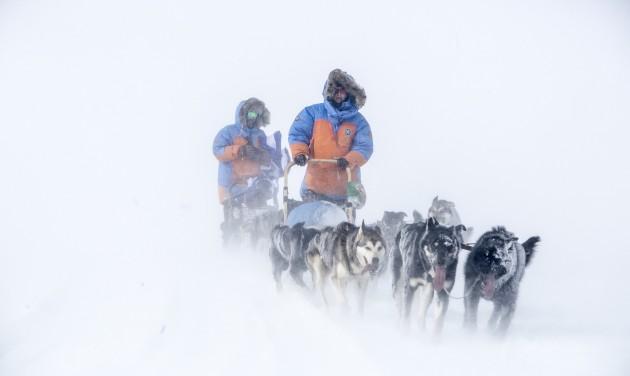 Magyarok is indultak a sarkvidéki kutyaszántúrán