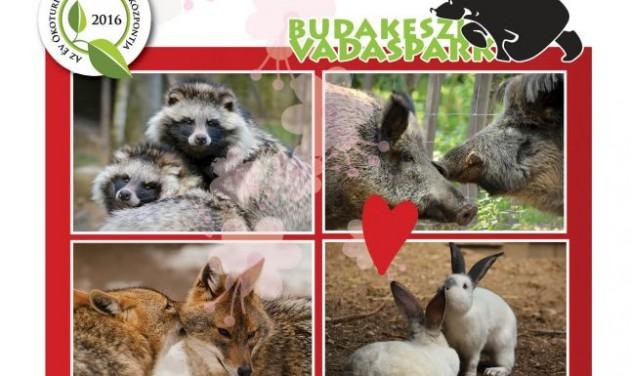 Szerelmes állatok napja a Budakeszi Vadasparkban