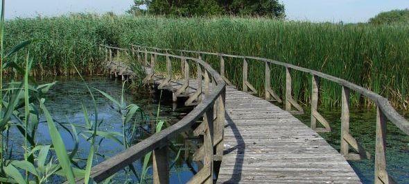 Hétvégén újra nyit a Tisza-tavi Vízi Sétány