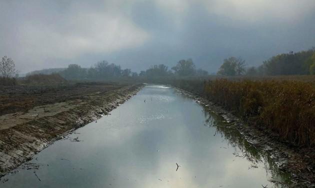 60 hektáron éled újjá a Holt-Tisza és három holtágának élővilága