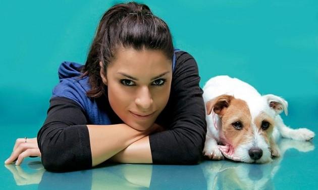 Melyik lesz év kutyabarát helye?
