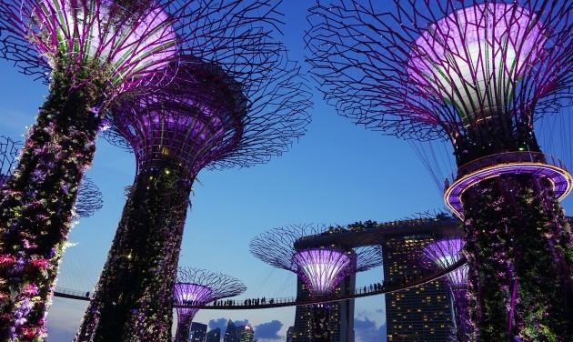 Szingapúrba indított járatot a LOT