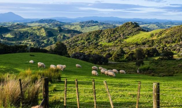 1960-ban jártak annyian Új-Zélandon, mint idén áprilisban