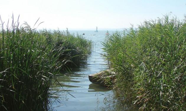 Sok a szúnyoglárva a Balatonnál, már most kezdik az irtást