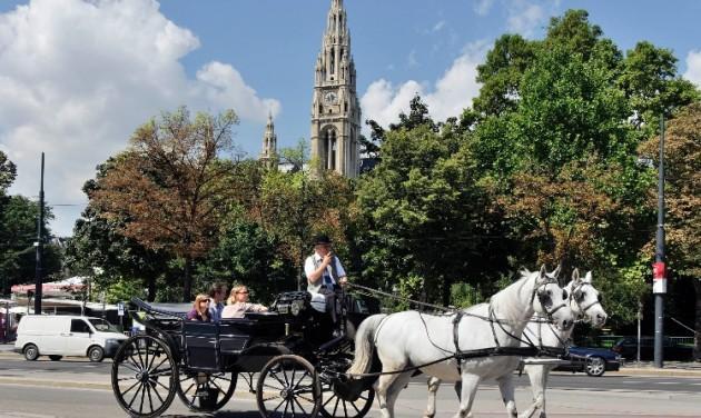 Művészet és lovak – indul az első Bécsi Kultúrfiáker