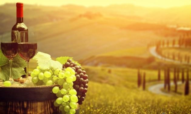 Lendületben a magyar szőlő- és borágazat, nőtt az export