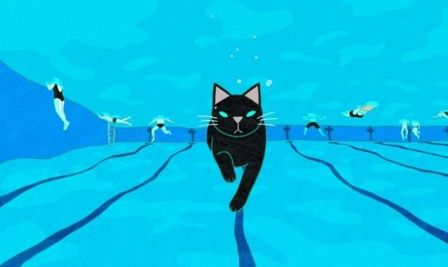 Macskás videók fesztiválja Bécsben
