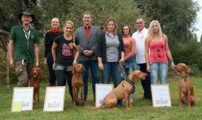 Kihirdették az MT Zrt. Utazz kutyával! fotópályázatának nyerteseit