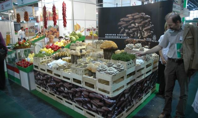 Jótékony célú élelmiszergyűjtés az OMÉK-on