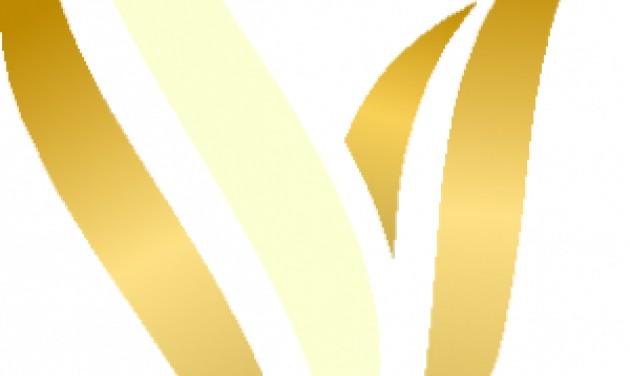 Recepciós és felszolgáló, Vitta Hotel Superior