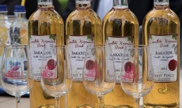 Debrecen szőlőskertje – egy újjáéledő borvidék