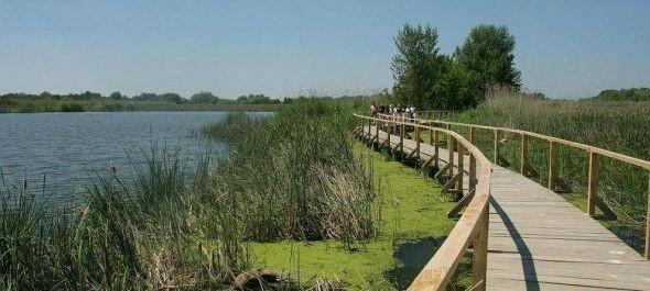 Tovább nőhet a Tisza-tó vendégforgalma az idén