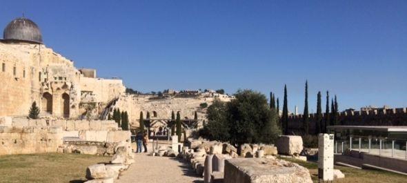 Izrael arcai