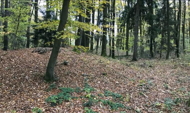 Soproni kerekasztal az örökségvédelemről